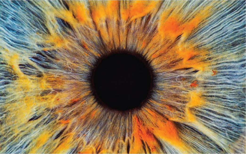 Natural Treatments for Macular Degeneration