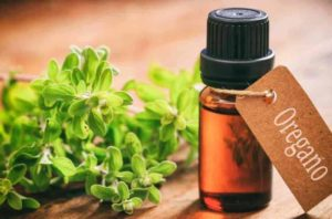 oregano oil uses benefits Inner terrain vs. outer terrain: which do you emphasize for good health?