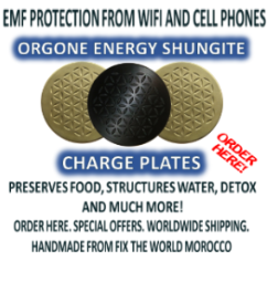 charge plates 20,000 Satellites for 5G to be Launched Sending Focused Beams of Intense Microwave Radiation Over Entire Earth