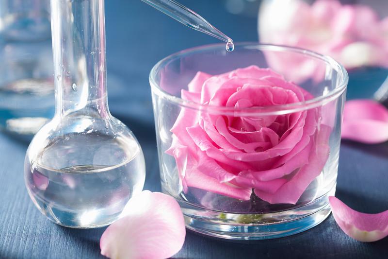 Rose Essential Oil Essential Oils & Diffusers