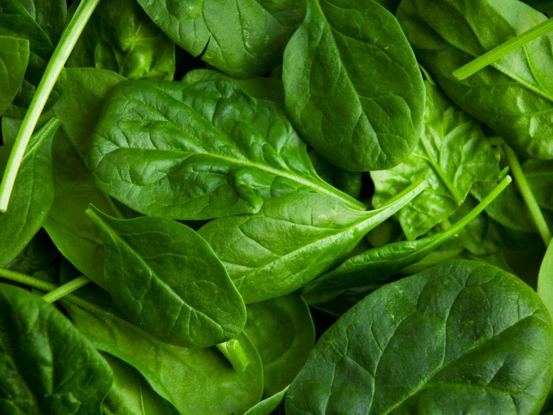 spinach Bone Health