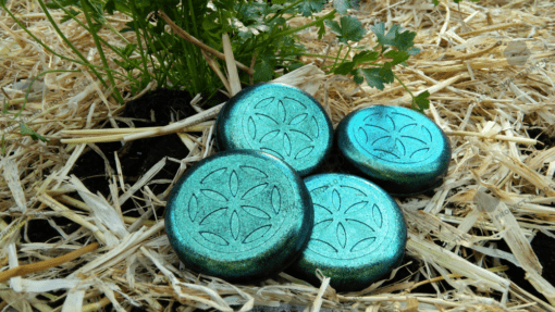 fourPucks coriander 720p Orgonite Urban Garden Set