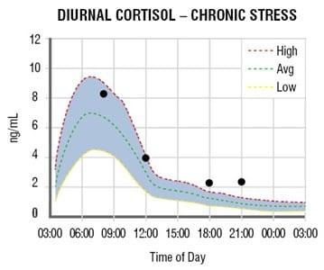 adrenal curve chronic stress Cortisol Awakening Response