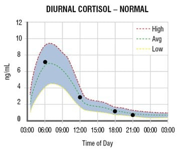 adrenal curve normal Adrenal Stress Test