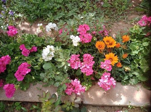 Vals Garden Patio Engage the senses with a sensory garden