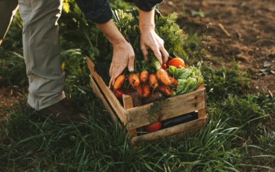 What does it mean to be self-sufficient?
