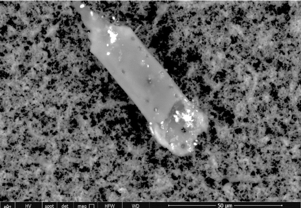 fig 11 Scanning & transmission electron microscopy reveals graphene oxide in Covid-19 vaccines (33 photos)
